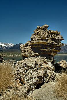 Mono Lake Water Levels by Michael Gordon