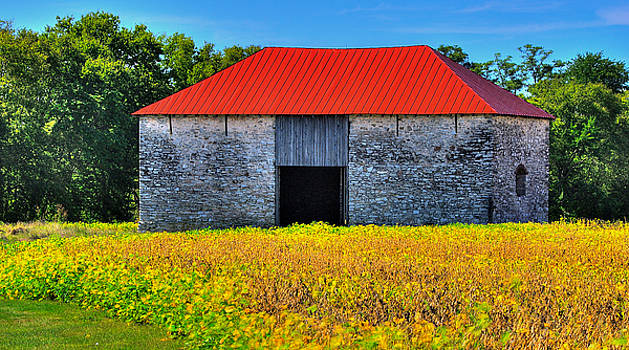 Monocacy National Battlefield at Rest - Fields That Once Ran Red - The Best Farm, Frederick, MD by Michael Mazaika