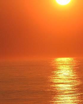 Monochromatic Sunrise by Carla Neufeld