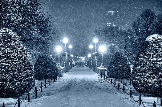 Toby McGuire - Monochrome Blue Nights Boston Public Garden Snow Storm MA Massachusetts Bridge Lights