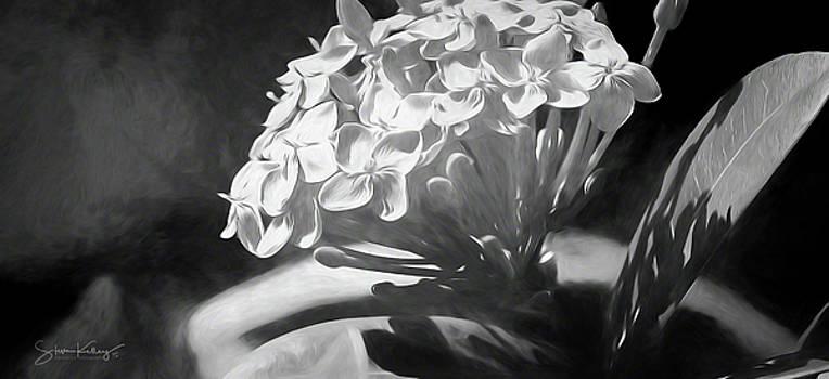 Monochrome Flora by Steve Kelley
