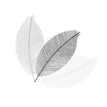 Monochrome Leaves by Andrea Kollo