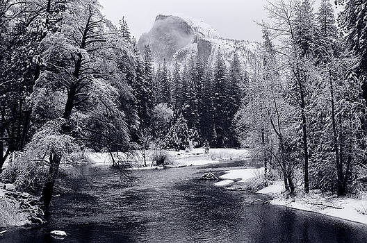 Reimar Gaertner - Monochrome of Half Dome with snow covered trees along the Merced