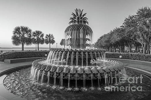 Dale Powell - Monochrome Pineapple Fountain in Charleston