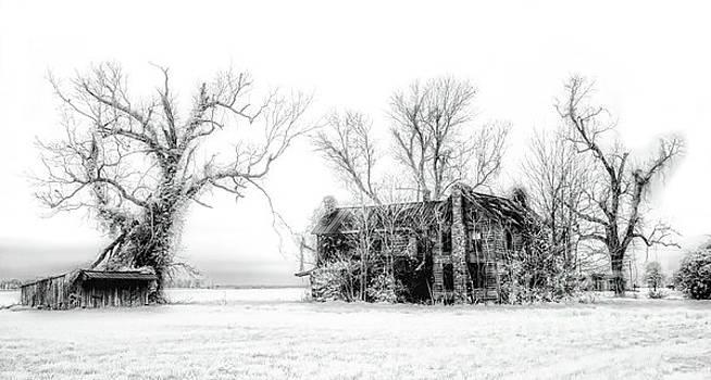 Dan Carmichael - Monster Manor on the Outer Banks