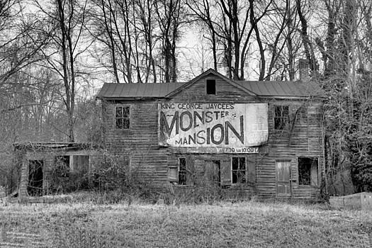 Monster Mansion by Troy  Skebo
