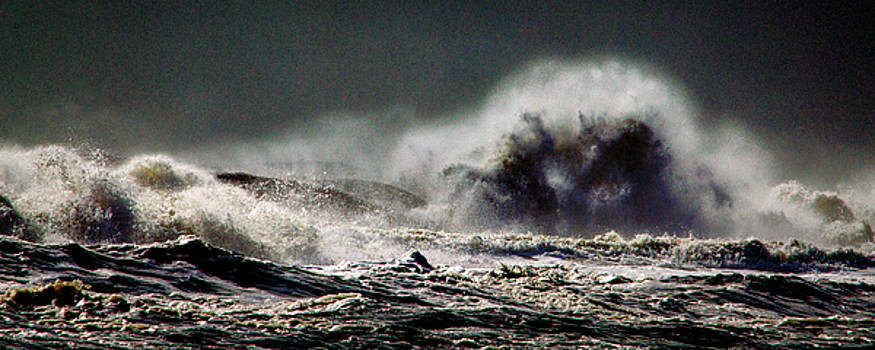 Bill Swartwout Fine Art Photography - Monster of the Seas
