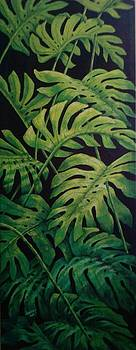 Monstera by Amber Munir
