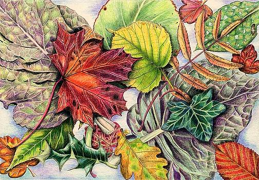 Montage of Autumn Leaves by Lynne Henderson