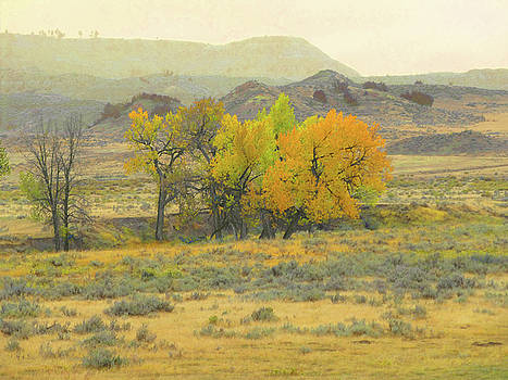 Montana Autumn Reverie by Cris Fulton