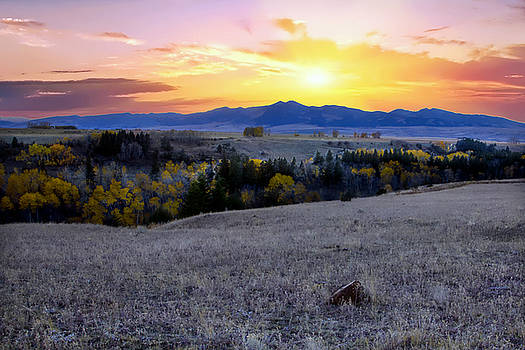 Montana back roads by Dana Moyer