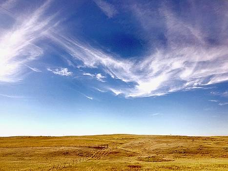 Montana Big Sky Country by Lexi Heft