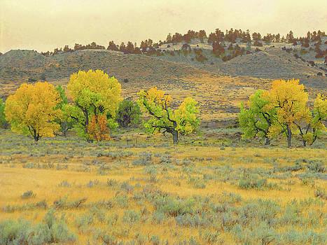 Montana Cottonwood Reverie by Cris Fulton