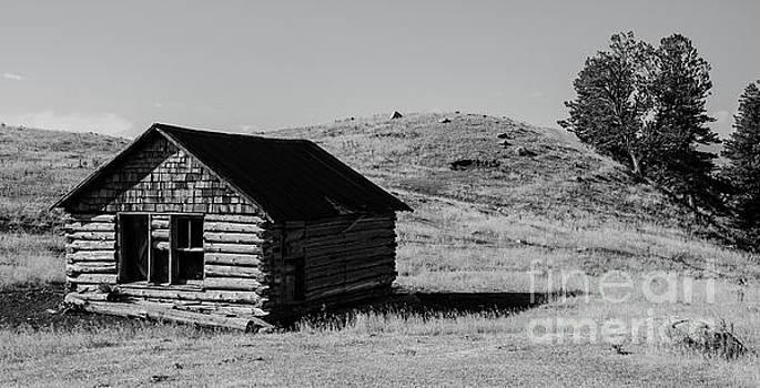 Montana Homestead by Nick Boren