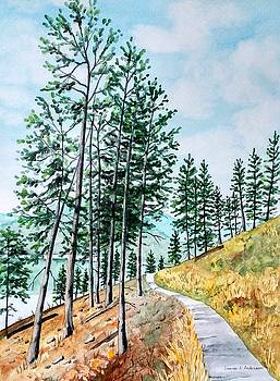 Montana Lake Como Trail by Laurie Anderson