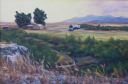 Montana Prairie by Donna Drake