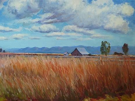 Montana Prairie in the Fall by Bonita Waitl
