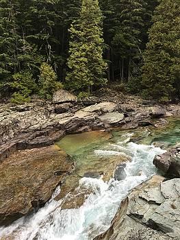Montana River by Jen Lynn Arnold