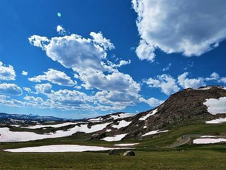 Montana by Vijay Sharon Govender