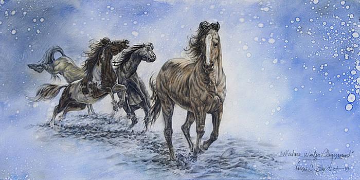 Montana Winter Playground by Virgil Stephens