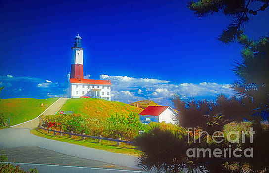 Montauk Point Lighthouse by Larry Mulvehill