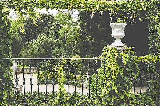 Monteiro-Mor Botanical Park by Andre Goncalves