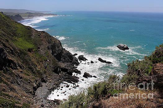 Monterey Bay Cove by Katherine Erickson