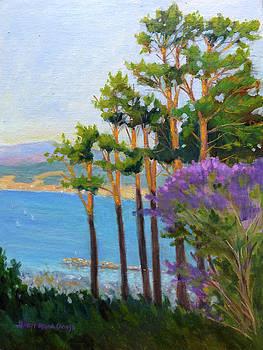 Monterey Bay Sunset by Rhett Regina Owings