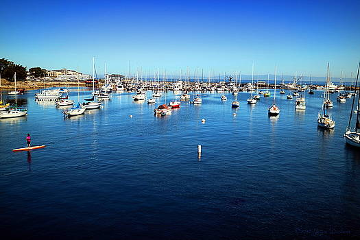 Joyce Dickens - Monterey Bay Two