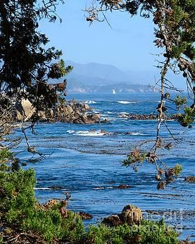 Monterey Coast by Patrick Witz
