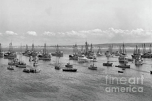 Monterey Fishing fleet at anchor in Monterey Harbor,  1946 by California Views Mr Pat Hathaway Archives