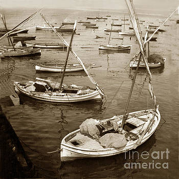 California Views Mr Pat Hathaway Archives - Monterey fishing fleet of lateen sailboats 1902