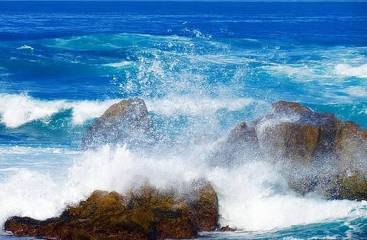 Monterey Peninsula 4 by David Norman