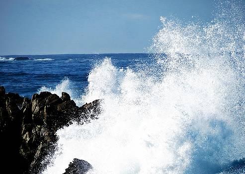 Monterey Peninsula 6 by David Norman