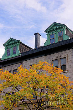 Montreal Architecture by John  Mitchell