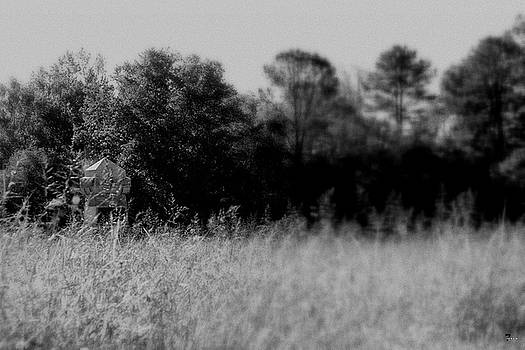 Jason Blalock - Monument In The Grass