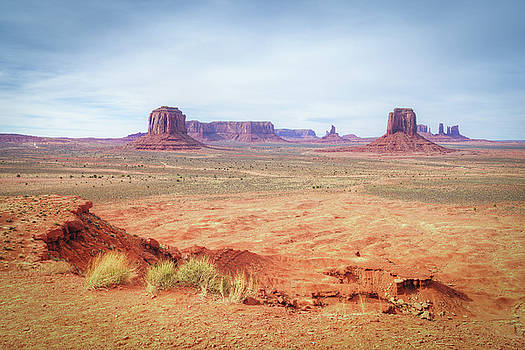 Monument Valley Artist's Grove by Ray Devlin