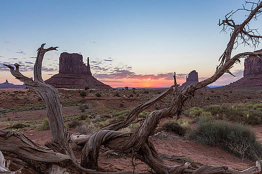 Monument Valley Sunrise with wood  by John McGraw