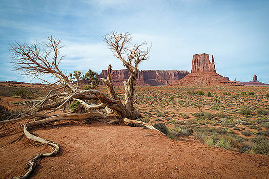 Monument Valley West Butte by Ray Devlin
