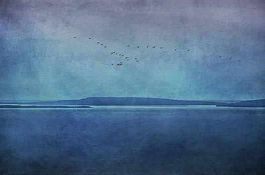 Moody  Blues - A Landscape by Andrea Kollo