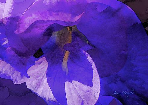James Temple - Moody Blues Digital Watercolor