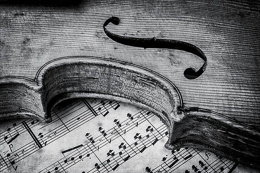 Moody Old Worn Violin by Garry Gay