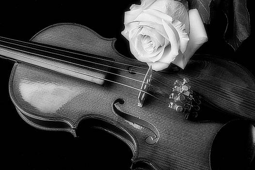 Moody Violin And Rose In Black And White by Garry Gay
