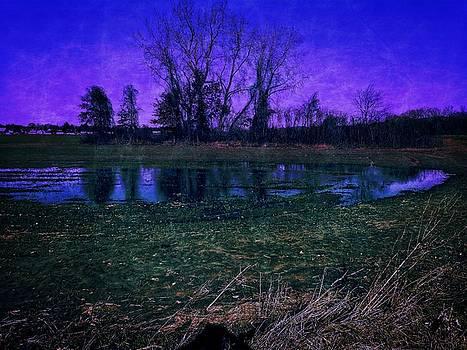 Dee Flouton - Moody Waters