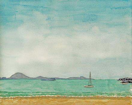 Joe Michelli - Mooloolaba Beach