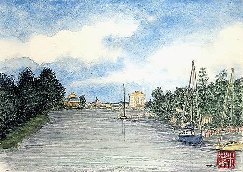 Joe Michelli - Mooloolaba Canal