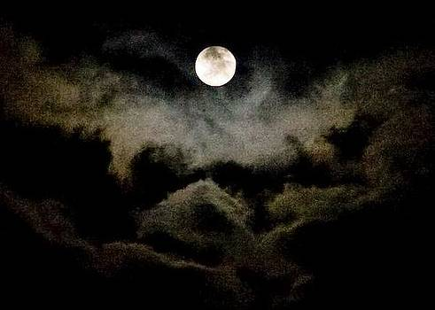 Moon And Clouds by Carla Neufeld