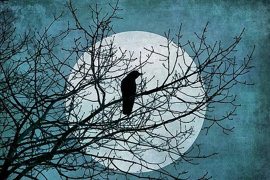 Patricia Strand - Moon and Raven