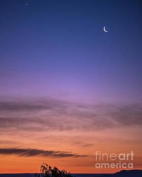 Moon and Venus by Steven Natanson