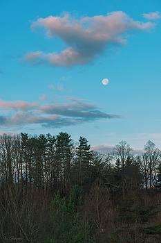 Moon at Dawn by Brian Shepard